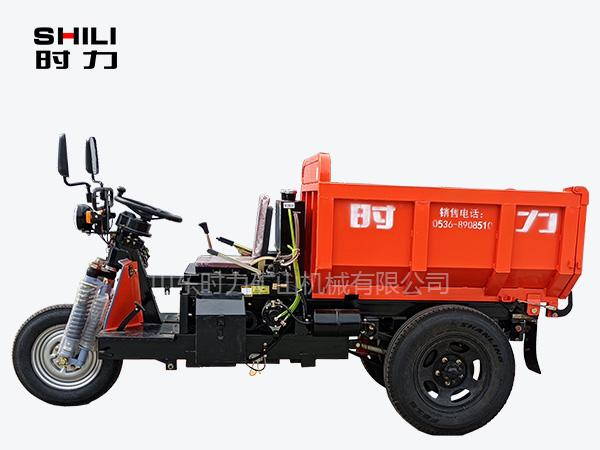 简易棚窄小型三轮车正面
